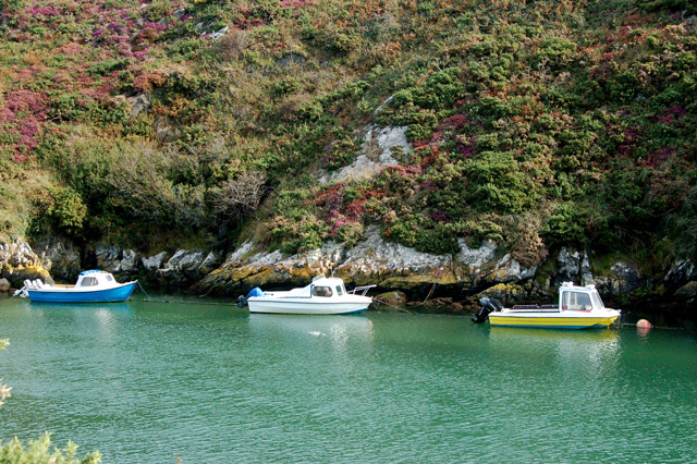A trio moored in Porthclais harbour