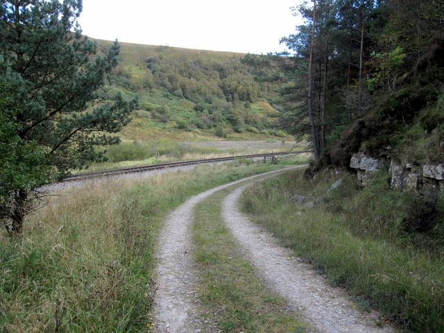 Forest track in Newtondale