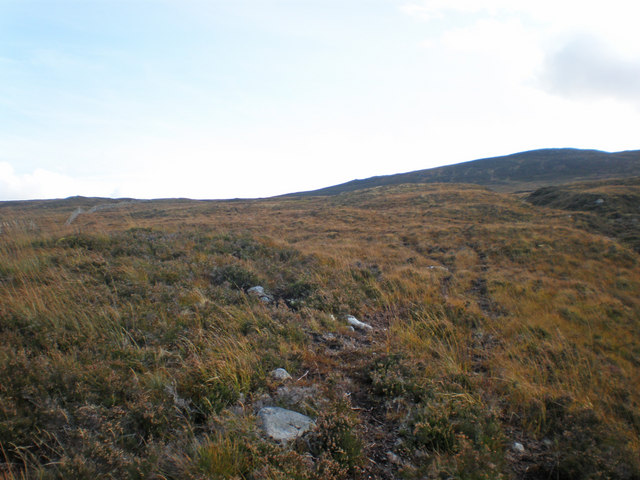 Moorland on lower slopes of Ceann a' Mhàim