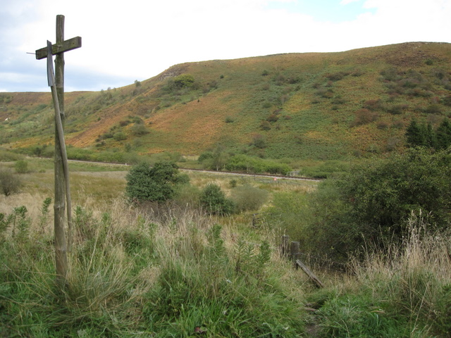 Looking across Newtondale towards Saltergate Moor