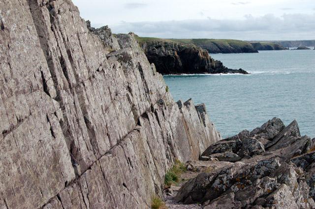 Rockface east of Porthclais (1)