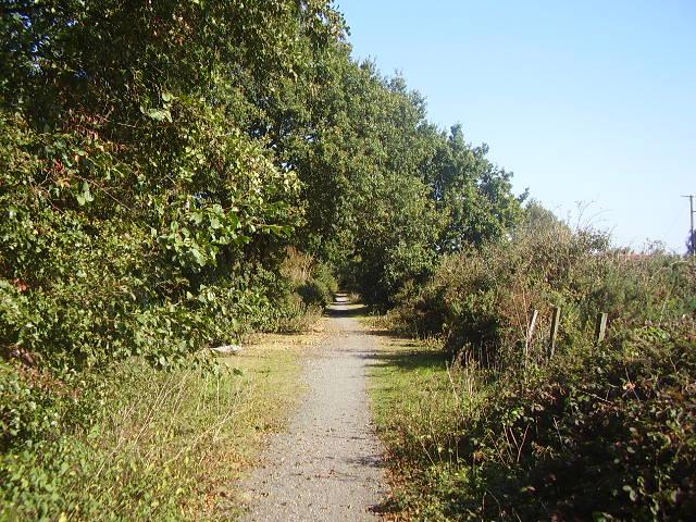Trackbed of the former Waveney Valley Railway
