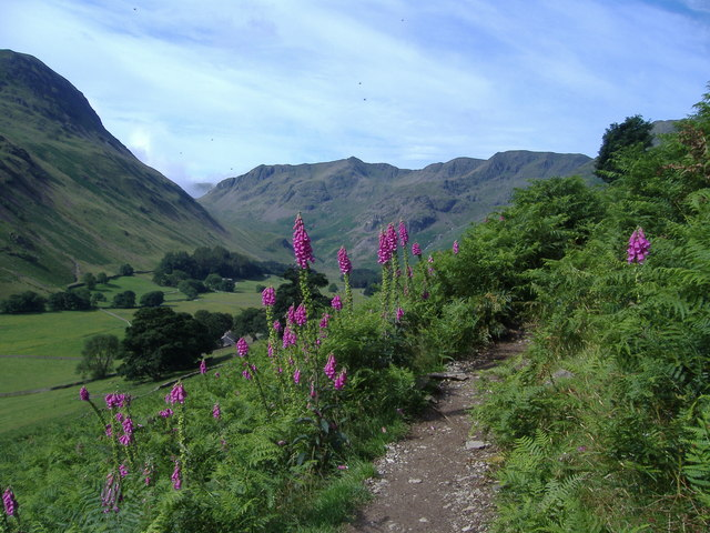 Grisedale from path to Helvellyn