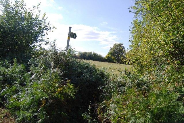 Footpath signposted off Upper Haysden Lane