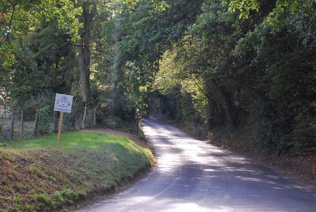 Upper Haysden Lane climbs the Bidborough Ridge