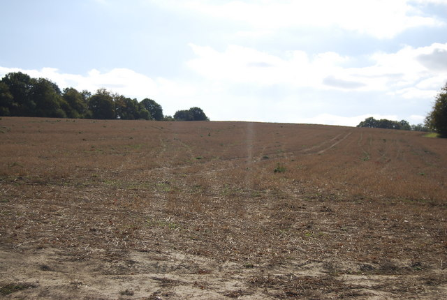 Field south of Ensfield Rd