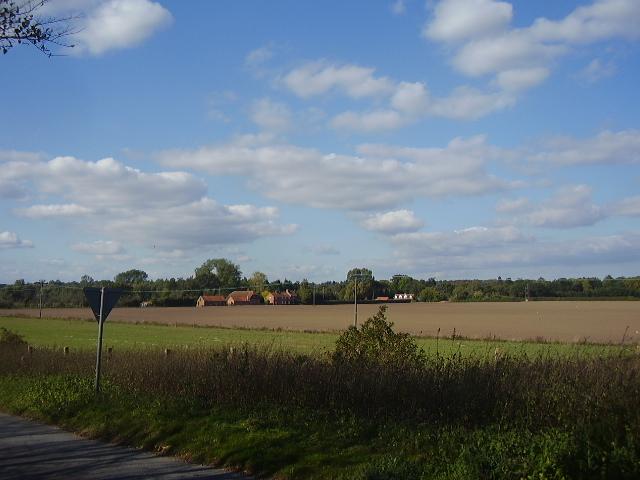 The fields surrounding Ellingham