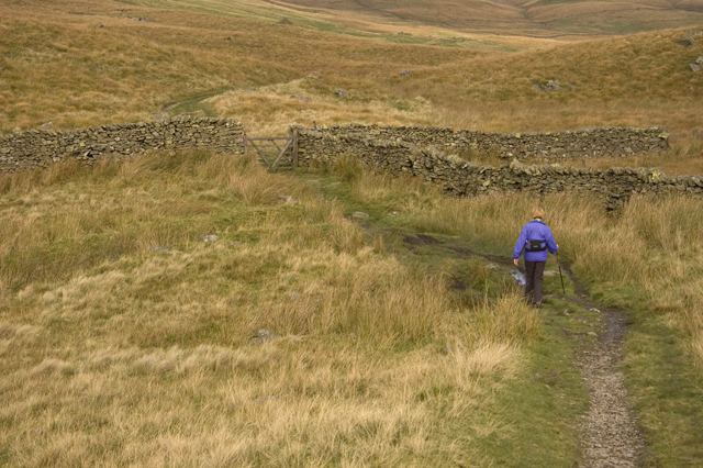 Path on Birk Rigg