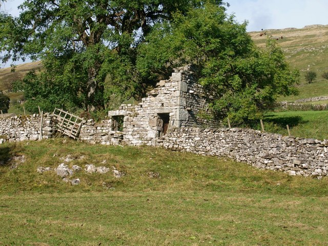 A ruined cottage, overtaken by nature