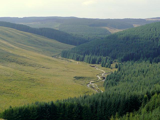 The Tywi Valley near Moel Prysgau, Powys