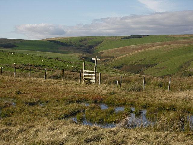 Bog and stile on Llechwedd Du