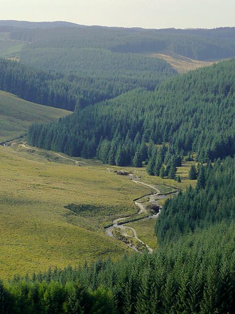 The Afon Tywi and Tywi Forest near Moel Prysgau