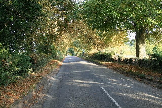 Autumn colour in Hen & Chick lane
