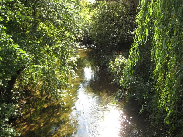 River Beane in Stapleford