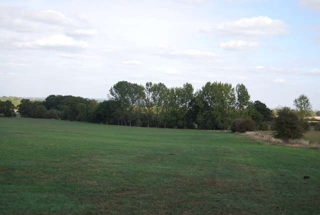 Field to the east of Ensfield Rd