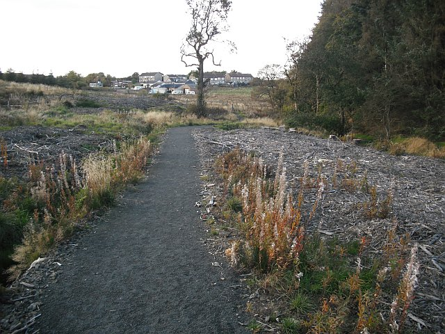 Path, Limerigg