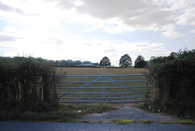 Gate to a field, Ensfield Rd