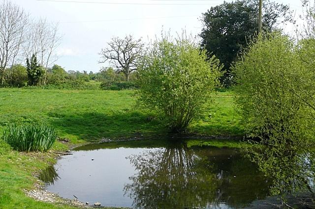 Turmer Pond