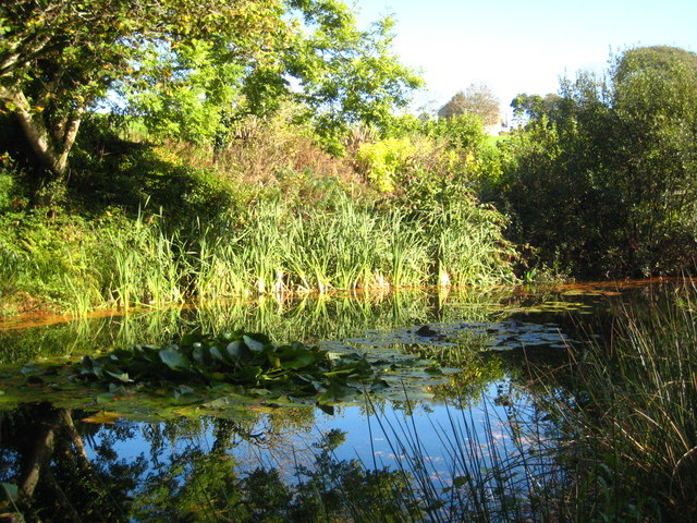 Pond at Penmount crematorium
