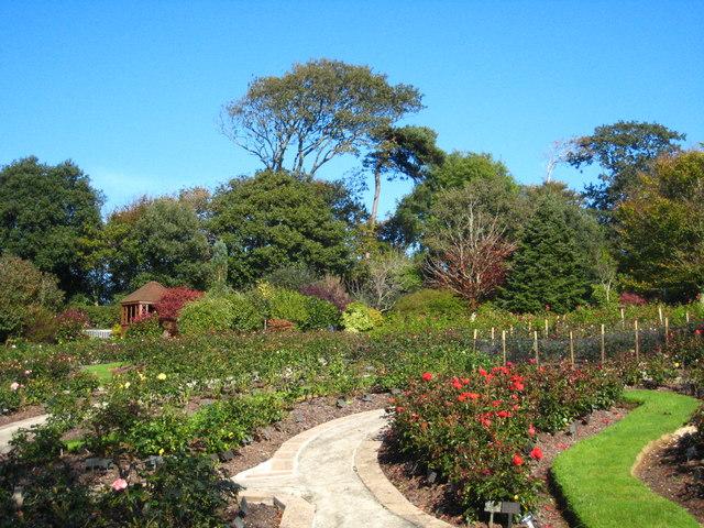 The rose garden at Penmount crematorium