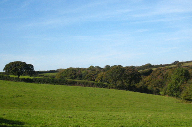 Fields and woodland at Laniley Farm