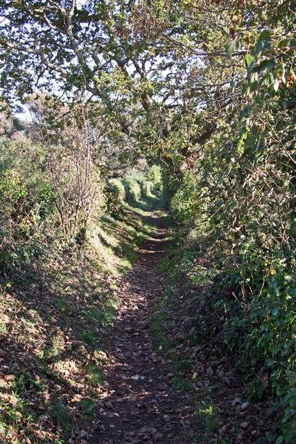 Footpath alongside the Penryn River near Trevissome