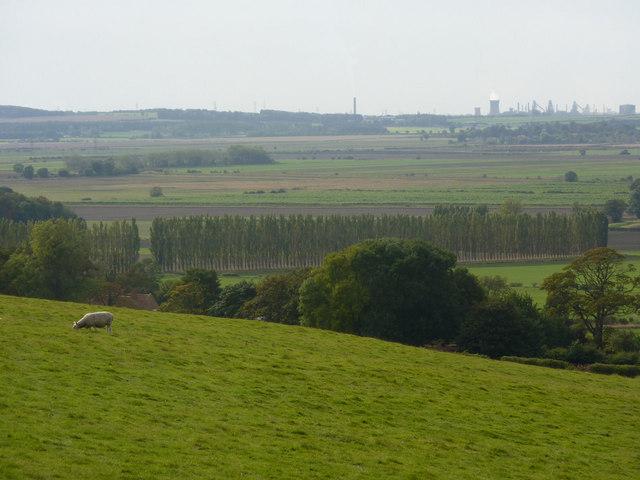 Grazing land overlooking Horkstow