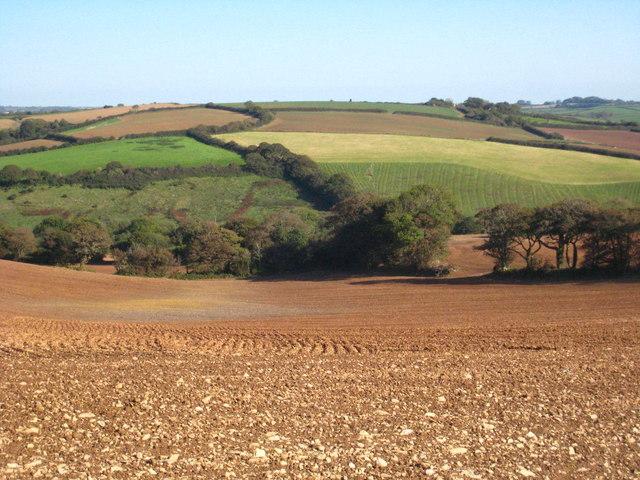Fields near Levardro