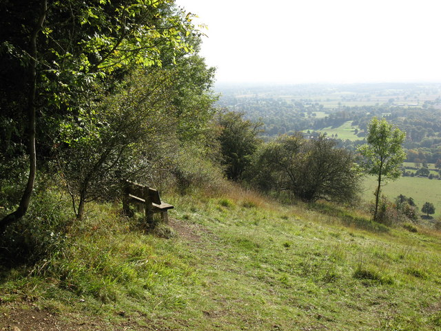 Seat and view near Oak Wood