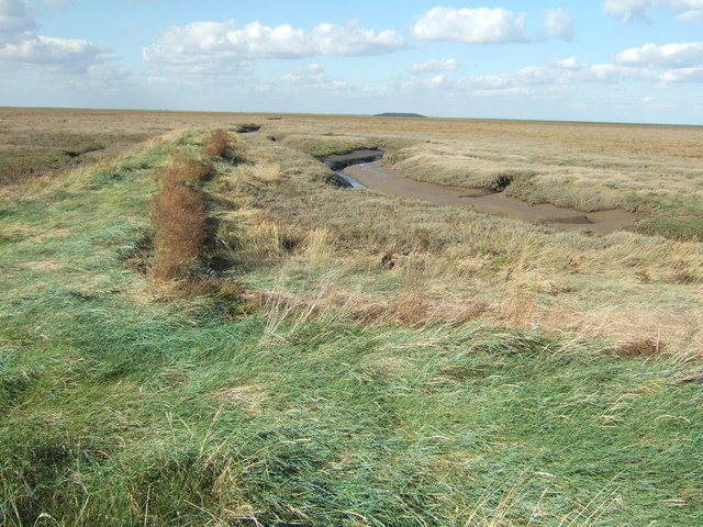 A grassy spur jutting out into The Wash