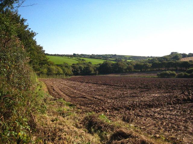 Field at Levardro