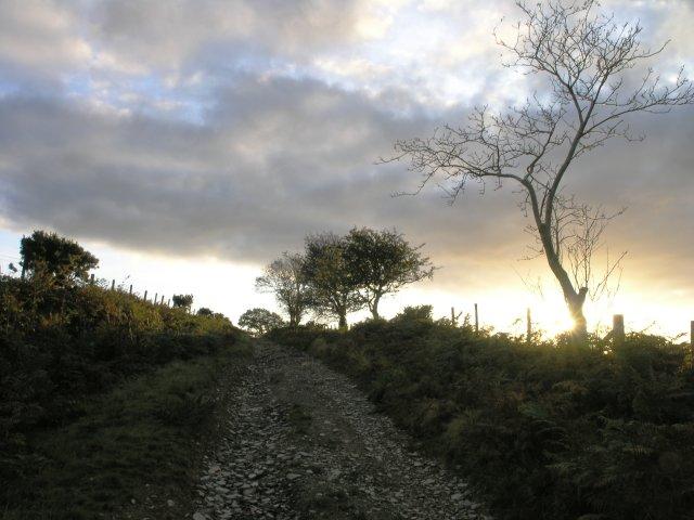 Bridleway towards Banc Pistill-Gwyn