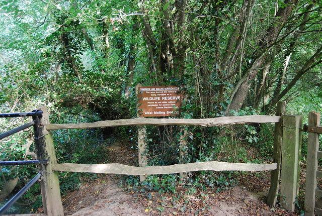 Wildlife Reserve by James Christie Bridge