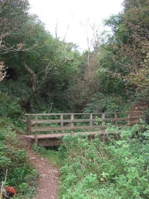 Footbridge on coast path near Dale Fort