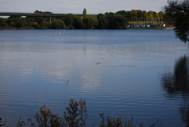 Looking across Haysden Lake