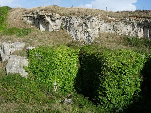 Limestone Quarry, St Aldhelm's Head