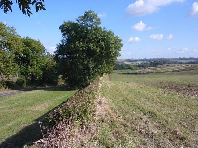 Field and lane near Benniworth
