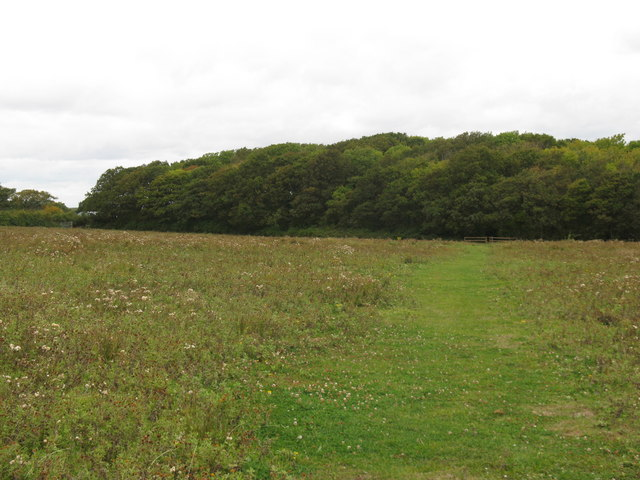 Footpath NW to South Furze Field