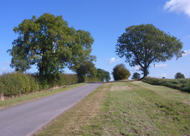 Near the top of the lane from Benniworth