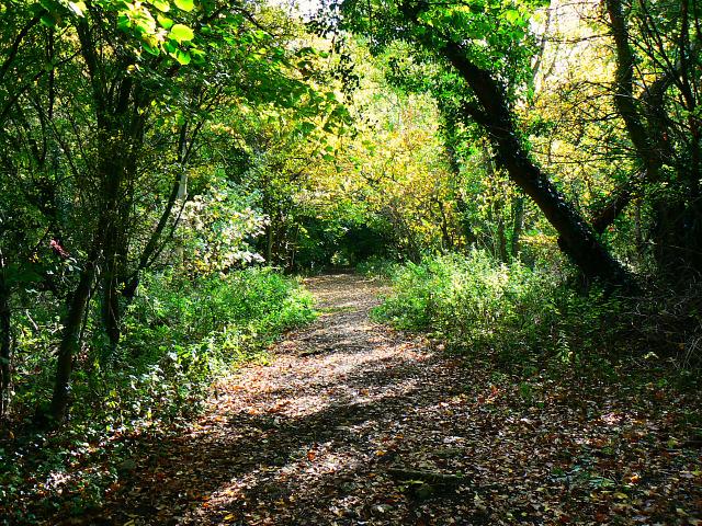 Trackbed, Swindon and Highworth Light Railway, Stanton Park, Swindon (2)