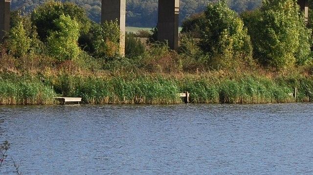 Fishing Platforms, Haysden Lake