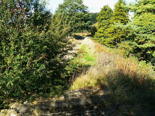 Trackbed, Swindon and Highworth Light Railway, Stanton Park, Swindon (3)