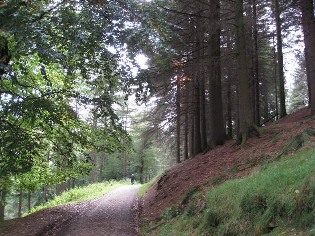 Back to Linch Clough
