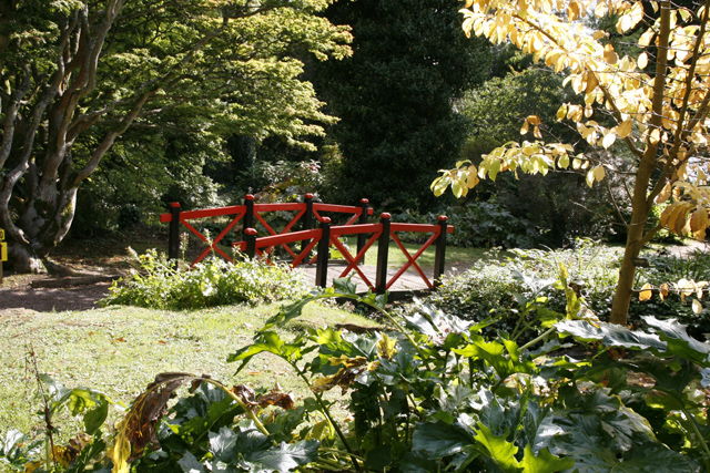 The Japanese Bridge, Batsford Arboretum