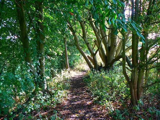 Trackbed, Swindon and Highworth Light Railway, Stanton Park, Swindon (4)