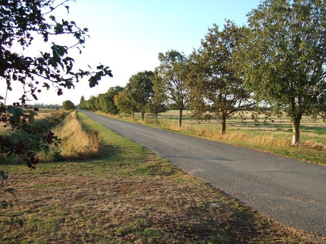 Garner's Lane towards Sutton Bridge