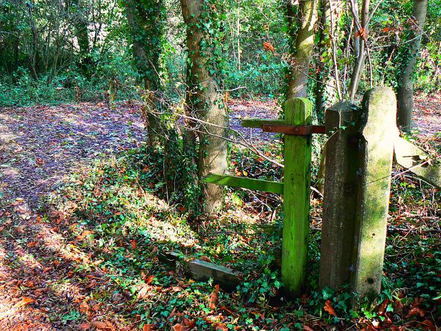 Gate remnants, Stanton Park, Swindon