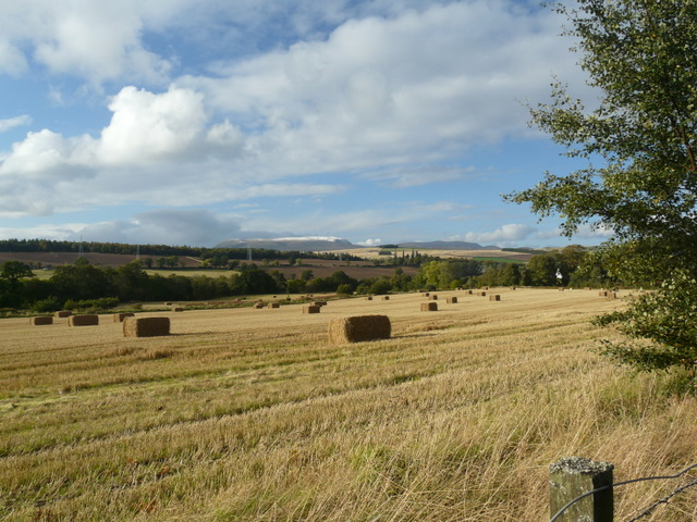 Stubble field, Conon Bridge