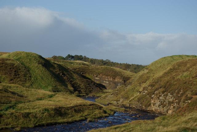 Garpel Water NW of Tibbie's Brig