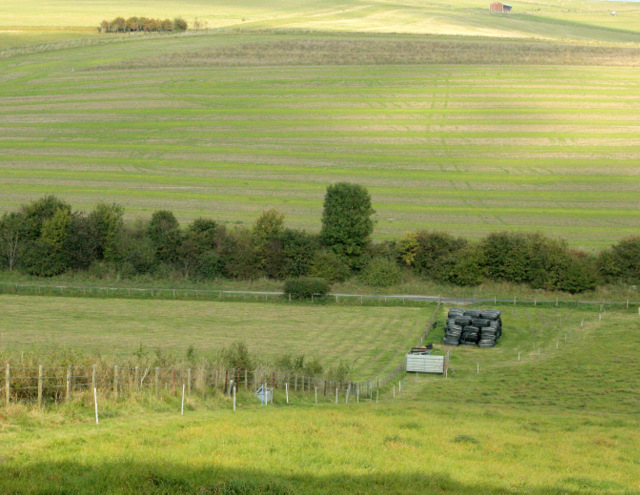 2009 : Shorn fields south of Monkton Deverill